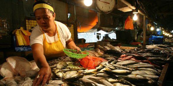 マニラの鮮魚市場 (Fish Market in Manila)